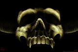 Shadow Skull Print