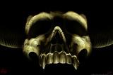 Shadow Skull Print by Tom Wood