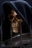 Reaper Prints by Tom Wood