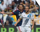2014 MLS Cup Final: Dec 7, New England Revolution vs LA Galaxy - Jermaine Jones, Landon Donovan Prints by Kyle Terada