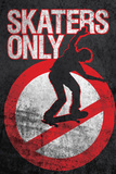 Skaters Only (Skating on Sign) Art Poster Print Photo