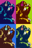 Steez Monkey Thinker Quad Pop-Art Posters