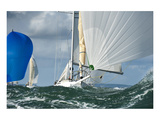 Yacht Sailing a Regatta Prints