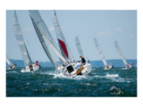 Women Sailing at Regatta Art