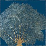 Gold Coral II Prints by Aimee Wilson