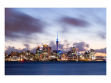 Auckland Skyline New Zealand Art