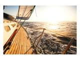 Yacht Sailing Regatta Print