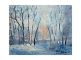 Snow in the Garden, 1993 Giclee Print by Patricia Espir