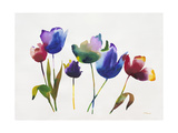 Rainbow Tulips 2 Art by Paulo Romero