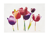 Rainbow Tulips 1 Art by Paulo Romero