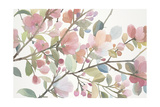Early Morning Petals Prints by Norman Wyatt Jr.