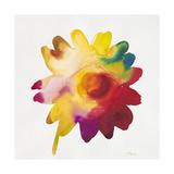 Rainbow Daisy 1 Posters by Paulo Romero