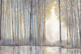 Forest Reflections Prints by Norman Wyatt Jr.
