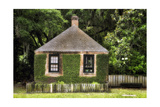 Small House On The Bayou Photographic Print by George Oze