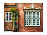 Windows Of Old Hamburg Photographic Print by George Oze