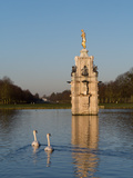 Two Swans Swim Past Diana Fountain Photographic Print by Charles Bowman