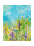 Lavender Blooms Photographic Print by Jan Weiss