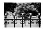 Capitol Stars 2 Photographic Print by John Gusky