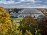 Kew Temperate House 1 Photographic Print by Charles Bowman