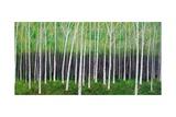 Deep Forest Reproduction photographique par Herb Dickinson