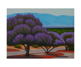 Chaste Trees Photographic Print by Gayle Faucette Wisbon