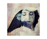 Wing Mind Photographic Print by Elena Ray