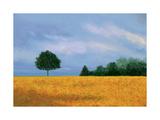 Peaceful Field Poster par Herb Dickinson