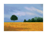 Peaceful Field Poster by Herb Dickinson