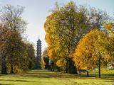 Kew Pagoda Vista Photographic Print by Charles Bowman