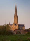 Salisbury Cathedral Photographic Print by Charles Bowman