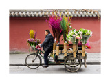 Chengdu Seller Photographic Print by Charles Bowman