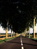 France Road Photographic Print by Charles Bowman