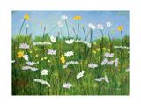 Wildflowers of Finland Art par Herb Dickinson