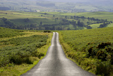 Country Road Photographic Print by Charles Bowman