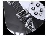 Rickenbacker Tone Art