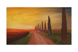 Tuscany Alley Way with Cypress at Dusk Prints by Markus Bleichner