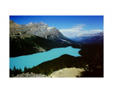Peyto Lake Photographic Print by Ronald A Dahlquist