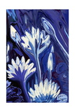 Lotus in Blue Photographic Print by Rabi Khan