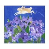 Running Rabbit Photographic Print by sylvia pimental