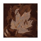 Maple Leaf Photographic Print by Rabi Khan