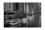 Chicago River Tour Boats BW Photographic Print by Steve Gadomski
