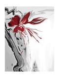 Red Orchid 1 Photographic Print by Rabi Khan