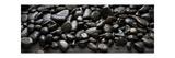 Black Stones Photographic Print by Steve Gadomski