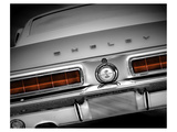 Shelby Mustang Prints