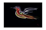 Freedom Bird Photographic Print by Rabi Khan