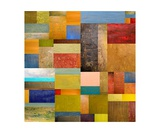 Pieces Project lll Photographic Print by Michelle Calkins