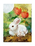 White Bunny Mom & Baby Photographic Print by sylvia pimental