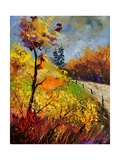 Landscape Autumn 454111 Photographic Print by  Ledent