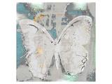Papillon XIII Prints