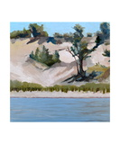 Lake Michigan Dunes with Beach Grass Photographic Print by Michelle Calkins